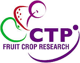 Collaborative Training Partnership for Fruit Crop Research (CTP FCR) funded by BBSRC and Industry